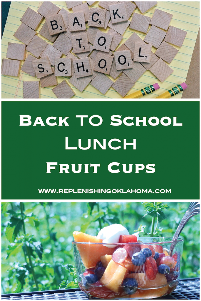 Fruit cups are a favorite for moms everywhere. This easy back to school recipe requires no sugar, artifical ingredients, but easy to make and pack.