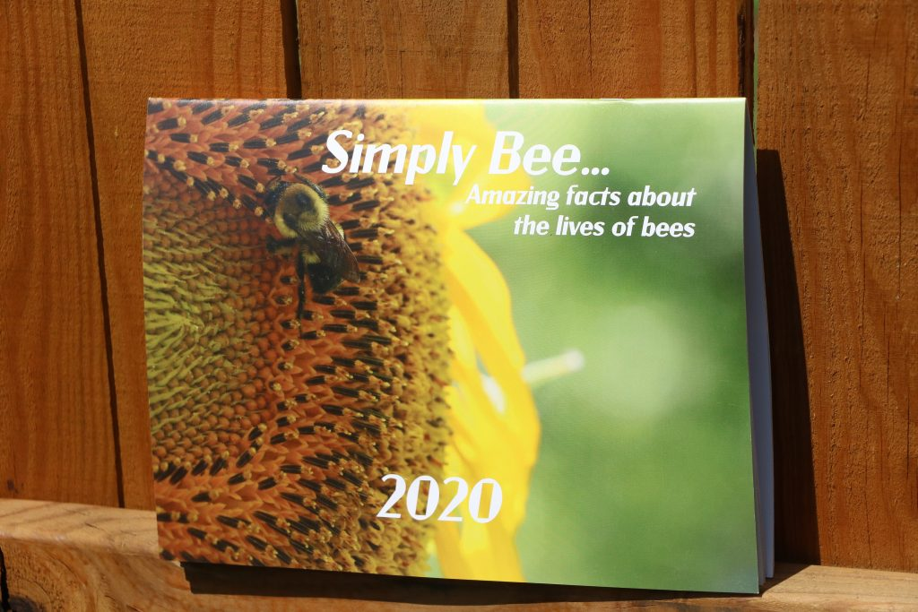 2020 Calendar with beautiful bee pictures.