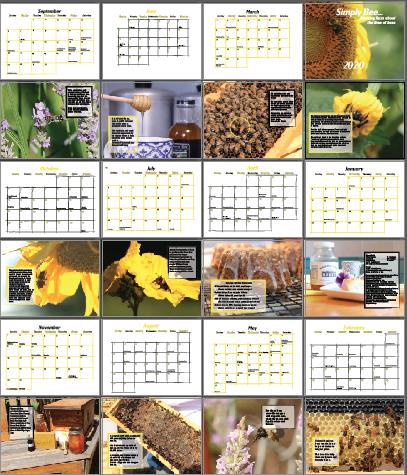 2021 Bee Calendar
