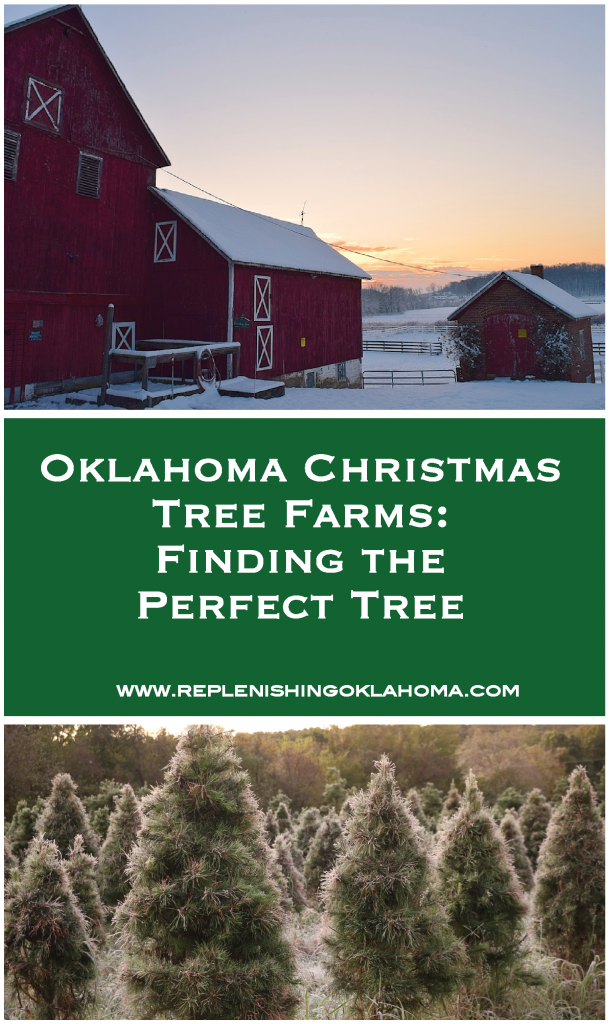 Oklahoma barn, Oklahoma Christmas tree farm
