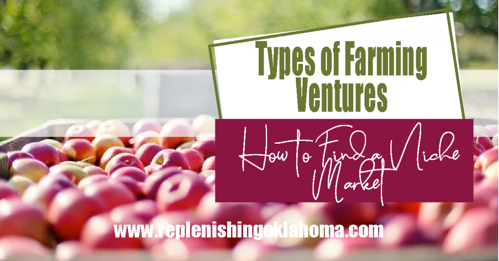A bucket of apples and a feature image with types of farming ventures: How to find a niche market