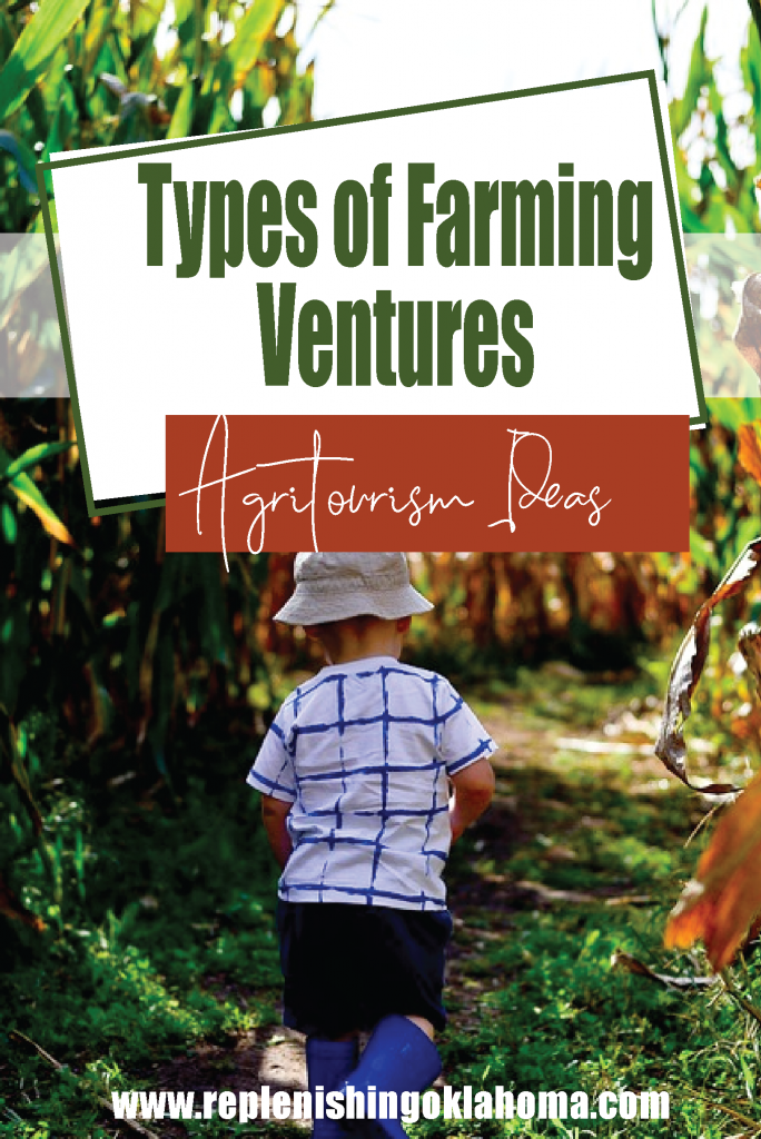 Agritourism ideas feature picture with a kid going through a corn maze.