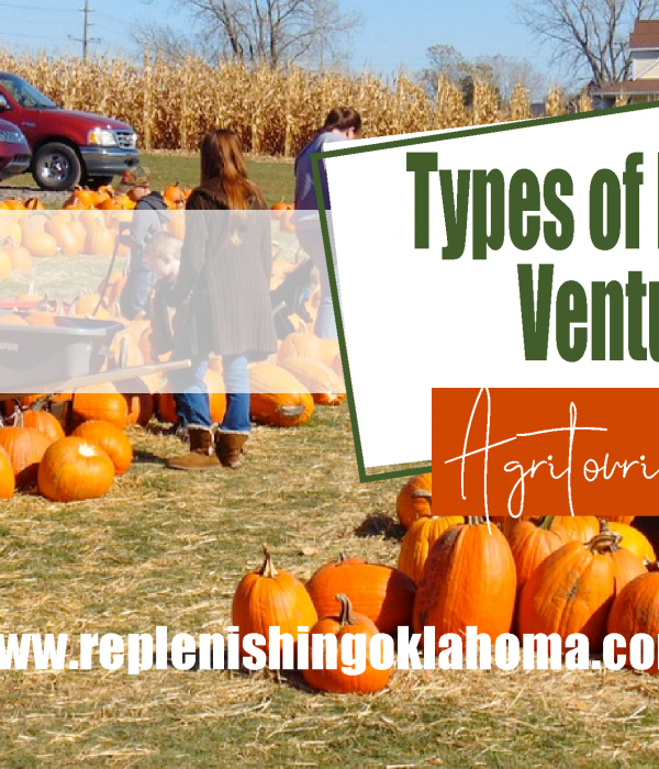 Types of Farming Ventures: Agritourism Ideas