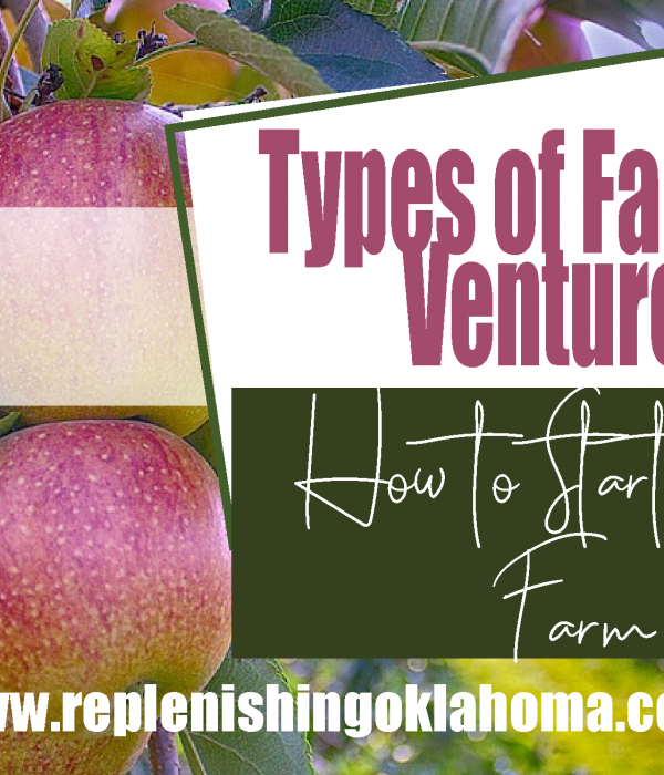 Types of Farming Ventures: How to Start a Tree Farm